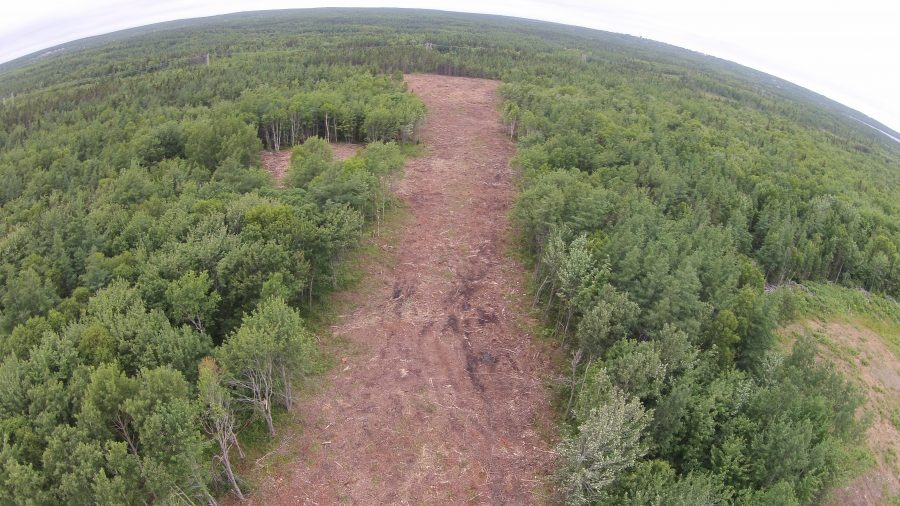 Land Clearing | Scott & Stewart Forestry