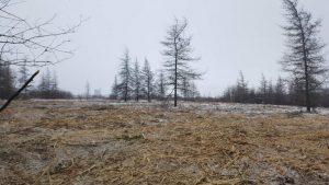 Scott & Stewart - Land Clearing