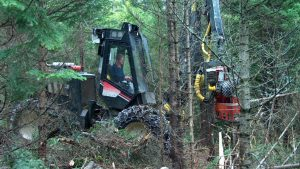 Scott & Stewart - Rocan Enviro Thinning Harvester