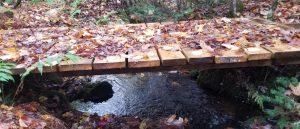 Scott & Stewart - Recreational Bridge