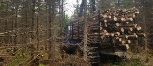 Scott & Stewart - Porter Hauling Wood